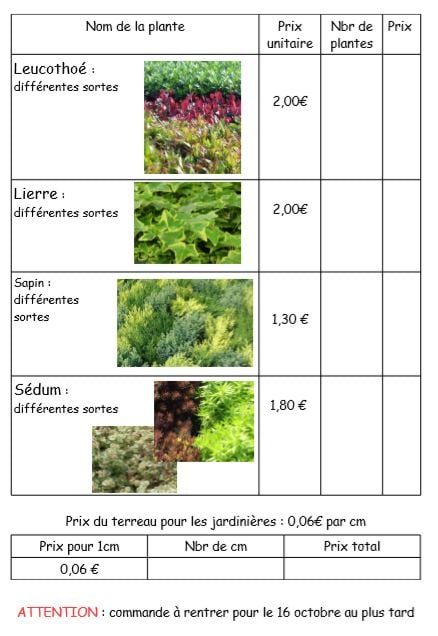 Vente de plantes d'automne